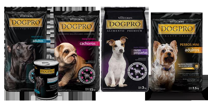 Dog pro Alimento para perros